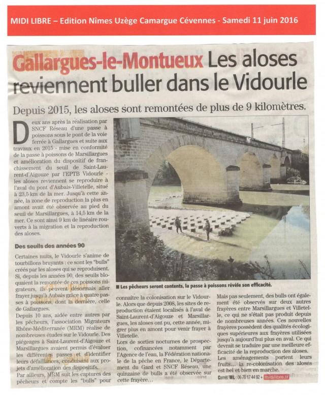 26 - Midi Libre Samedi 11 juin 2016