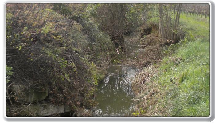 St-Jean de Serre, ruisseau de Lassaut (après)