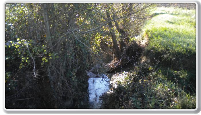 St-Jean de Serre, ruisseau de Lassaut (avant)