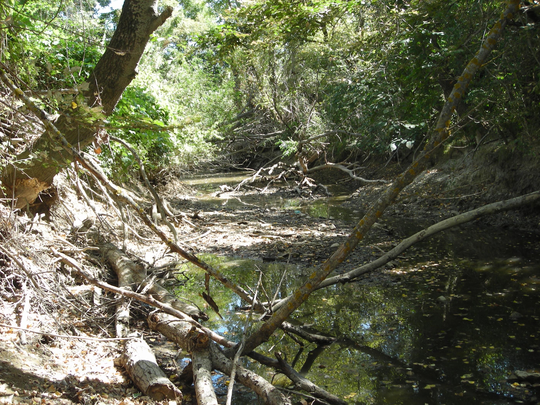 Comité sécheresse du Gard du 18 août : le bassin du Vidourle maintenu en «Vigilance» dans sa majeure partie